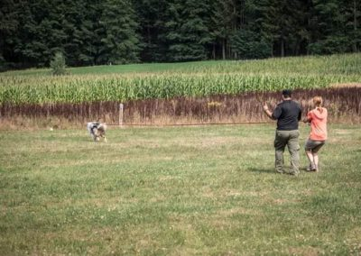 Georgia K9 (GAK9) Mantrail Seminar mit David Lee Layata